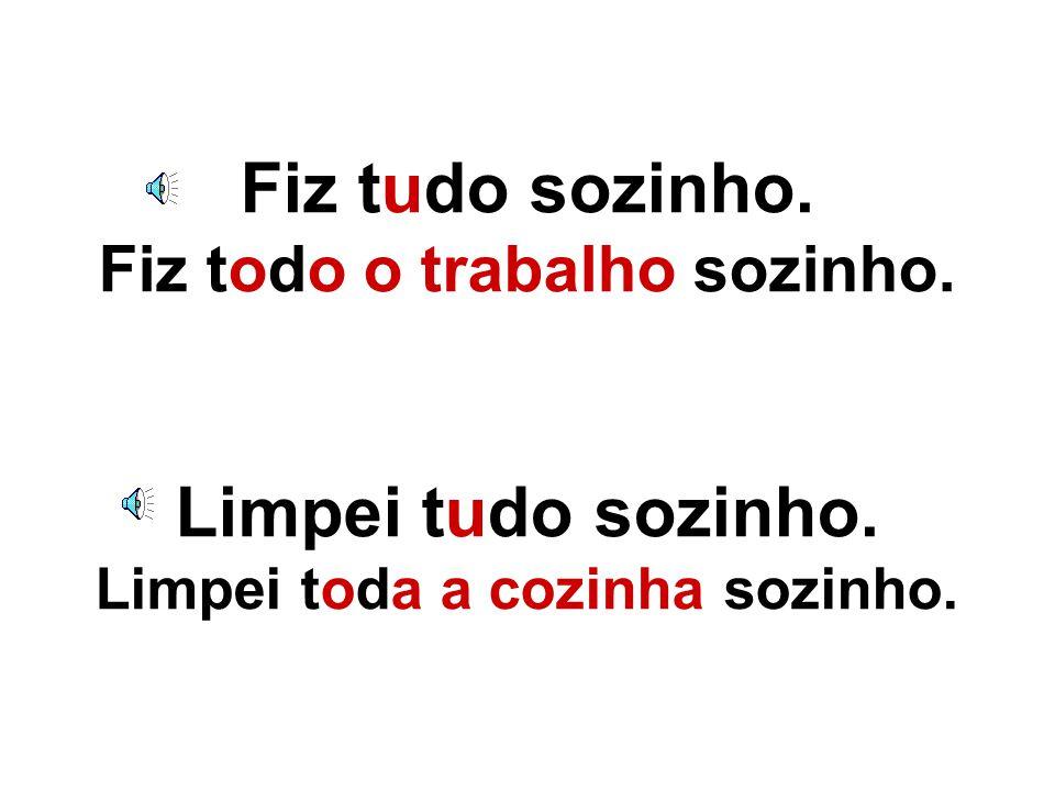 Tanto TUDO como TODO são pronomes indefinidos.