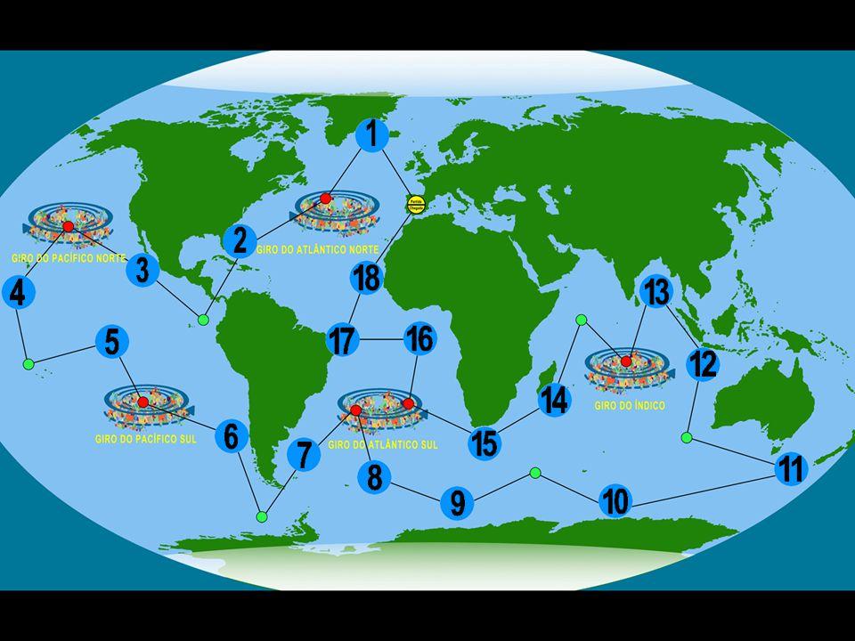 3 Lontra-marinha (Enhydra lutris) Características: É um mamífero.