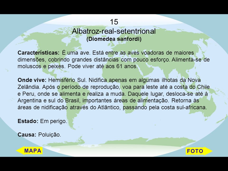 15 Albatroz-real-setentrional (Diomedea sanfordi) Características: É uma ave. Está entre as aves voadoras de maiores dimensões, cobrindo grandes distâ