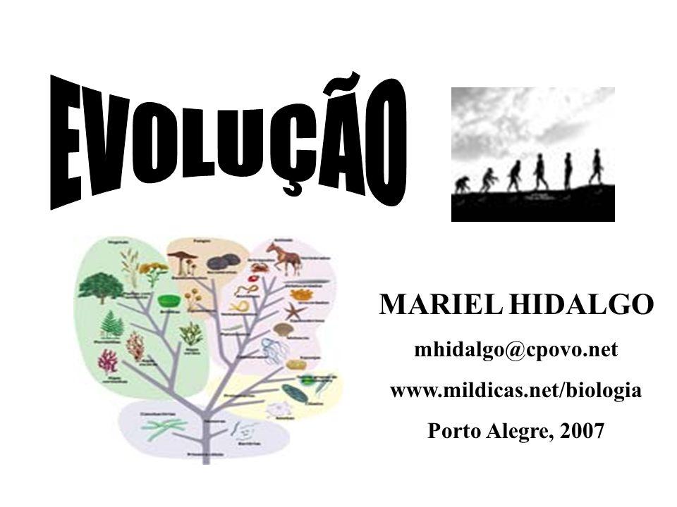 MARIEL HIDALGO mhidalgo@cpovo.net www.mildicas.net/biologia Porto Alegre, 2007