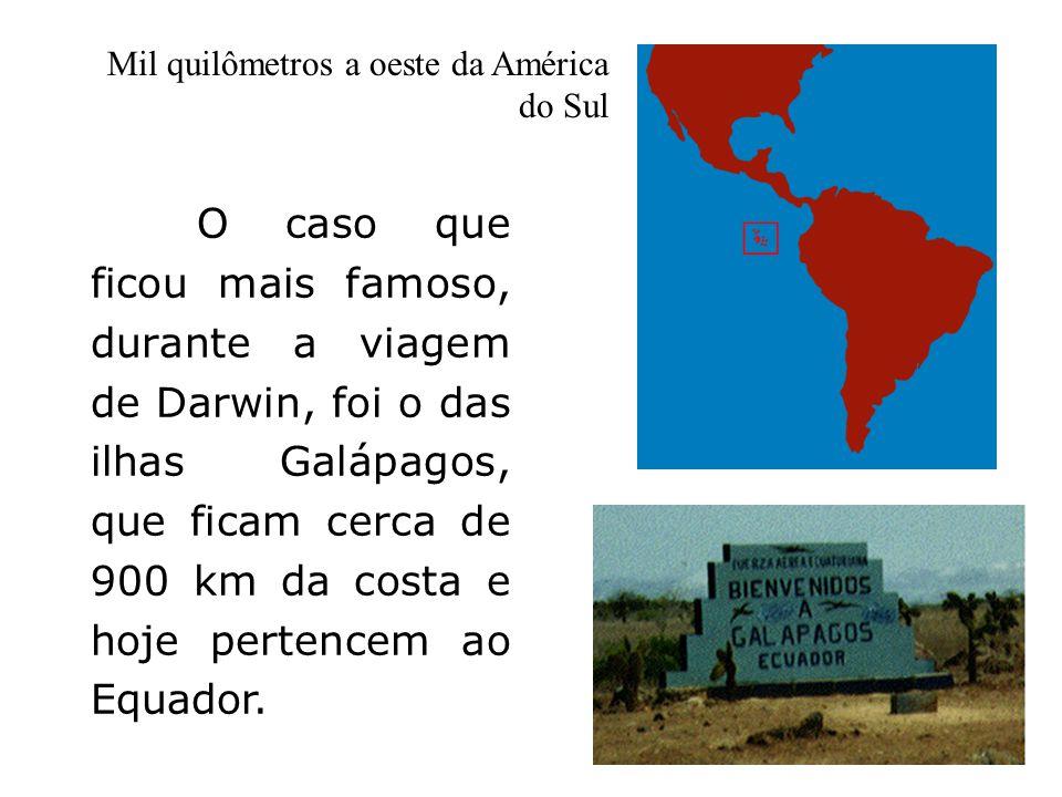 Mil quilômetros a oeste da América do Sul O caso que ficou mais famoso, durante a viagem de Darwin, foi o das ilhas Galápagos, que ficam cerca de 900