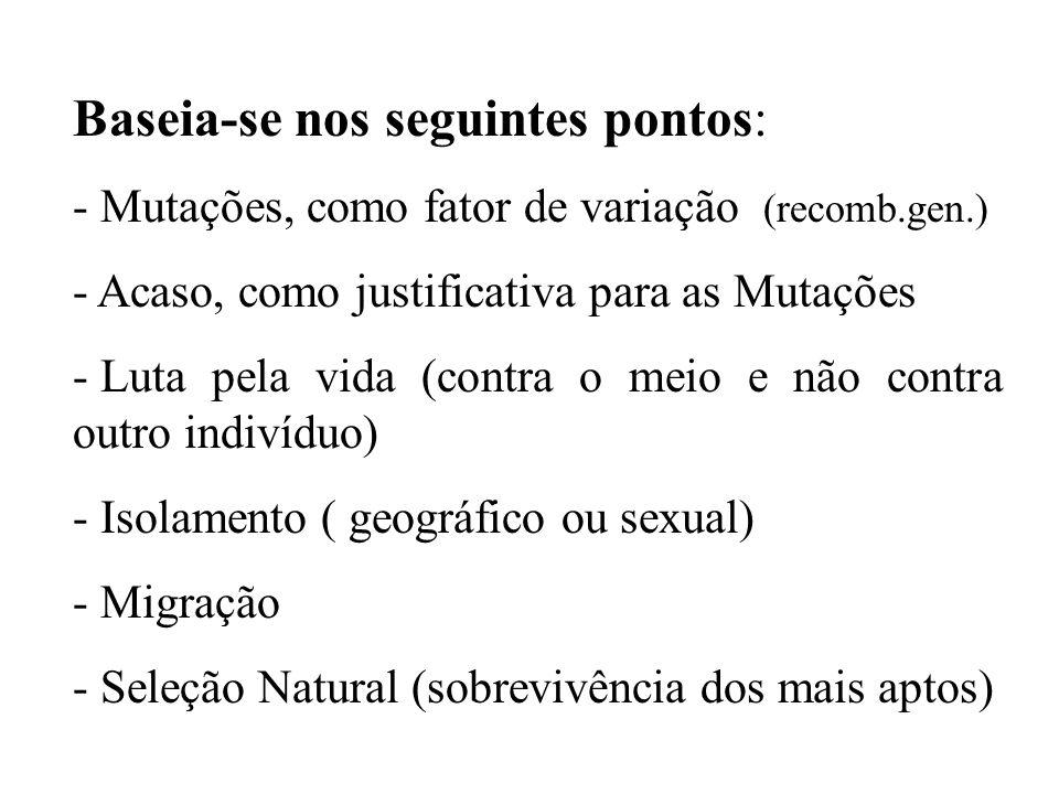 Baseia-se nos seguintes pontos: - Mutações, como fator de variação (recomb.gen.) - Acaso, como justificativa para as Mutações - Luta pela vida (contra