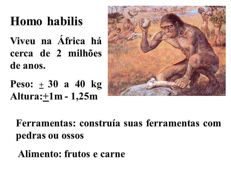 Homo habilis Viveu na África há cerca de 2 milhões de anos. Peso: + 30 a 40 kg Altura:+1m - 1,25m Ferramentas: construía suas ferramentas com pedras o