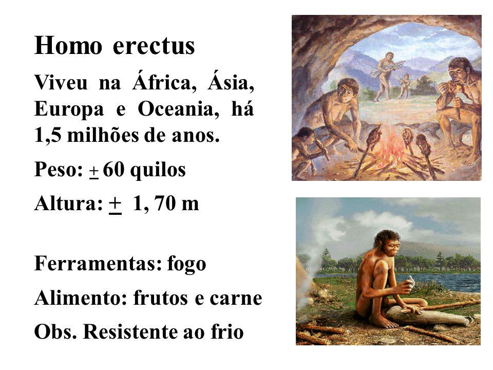 Homo erectus Viveu na África, Ásia, Europa e Oceania, há 1,5 milhões de anos. Peso: + 60 quilos Altura: + 1, 70 m Ferramentas: fogo Alimento: frutos e