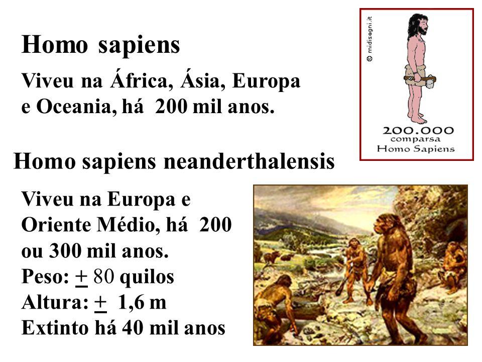 Homo sapiens Viveu na África, Ásia, Europa e Oceania, há 200 mil anos. Homo sapiens neanderthalensis Viveu na Europa e Oriente Médio, há 200 ou 300 mi