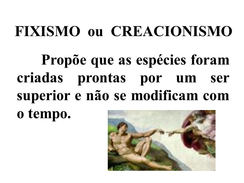 FIXISMO ou CREACIONISMO Propõe que as espécies foram criadas prontas por um ser superior e não se modificam com o tempo.