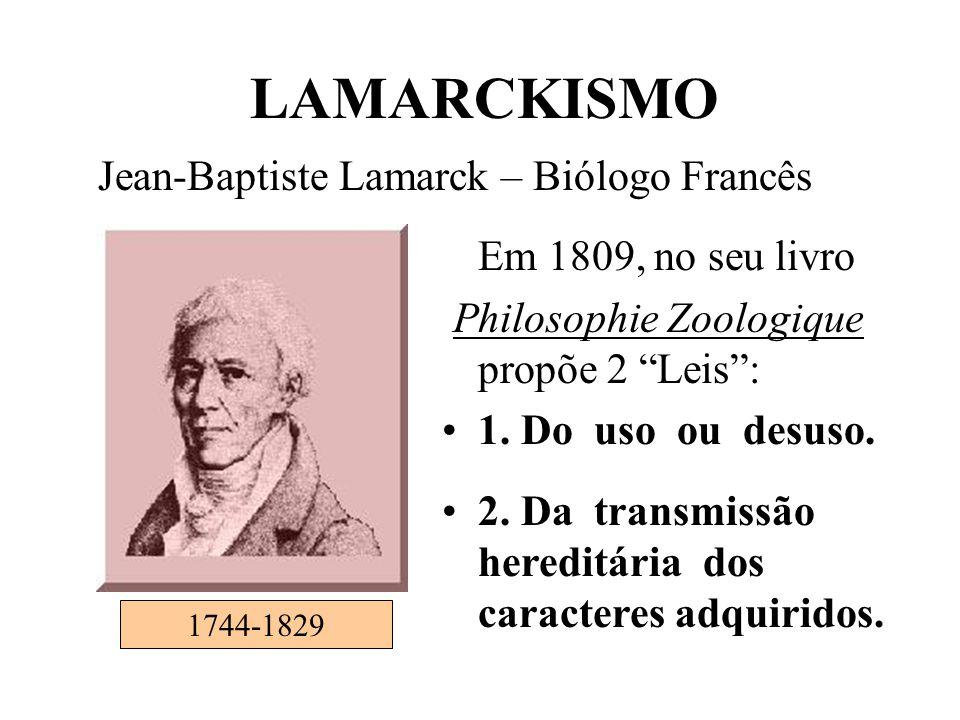 """Em 1809, no seu livro Philosophie Zoologique propõe 2 """"Leis"""": •1. Do uso ou desuso. •2. Da transmissão hereditária dos caracteres adquiridos. 1744-182"""