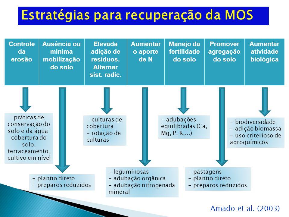 Estratégias para recuperação da MOS Controle da erosão Ausência ou mínima mobilização do solo Elevada adição de resíduos.