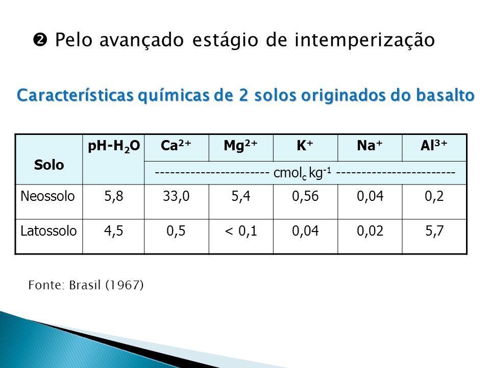  Pelo avançado estágio de intemperização Características químicas de 2 solos originados do basalto Solo pH-H 2 OCa 2+ Mg 2+ K+K+ Na + Al 3+ ----------------------- cmol c kg -1 ------------------------ Neossolo5,833,05,40,560,040,2 Latossolo4,50,5< 0,10,040,025,7 Fonte: Brasil (1967)