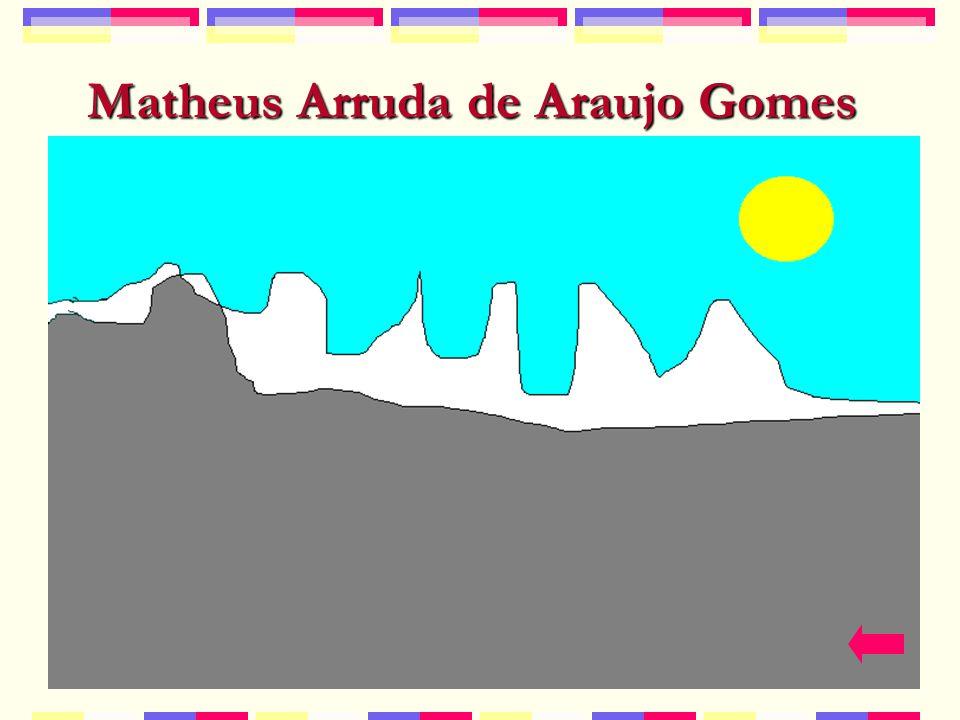 Matheus Arruda de Araujo Gomes