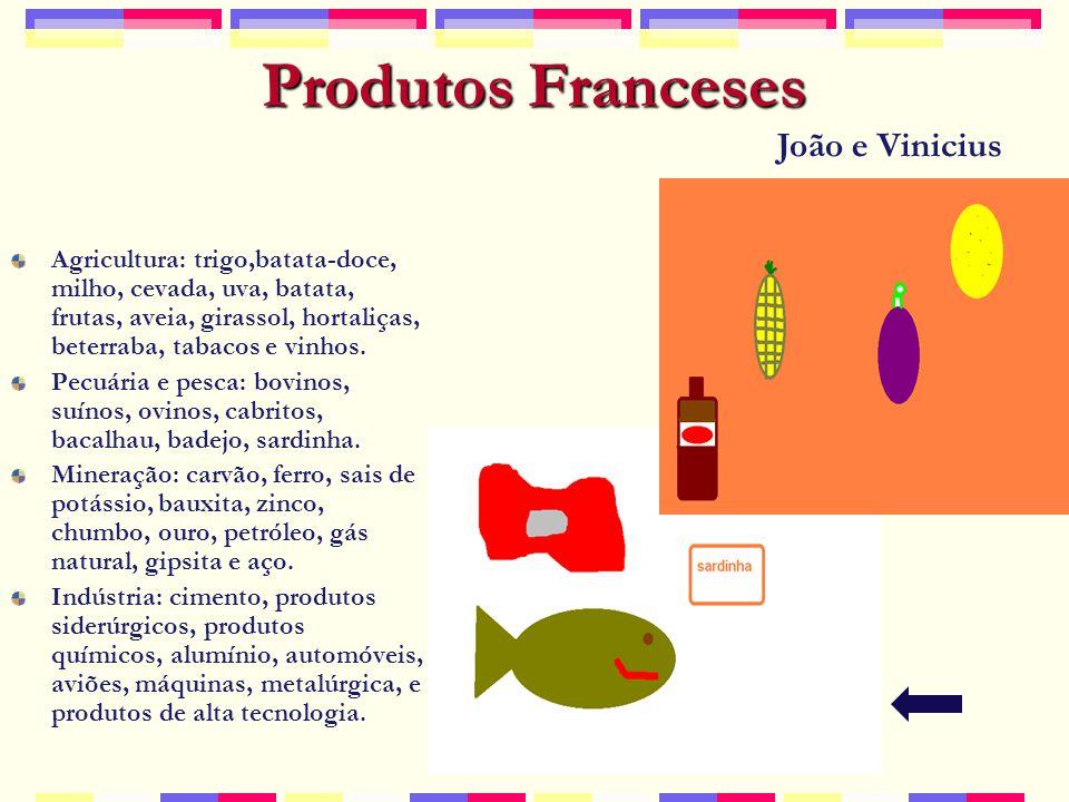 Produtos Franceses Agricultura: trigo,batata-doce, milho, cevada, uva, batata, frutas, aveia, girassol, hortaliças, beterraba, tabacos e vinhos.