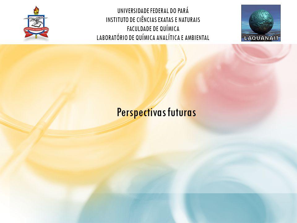 UNIVERSIDADE FEDERAL DO PARÁ INSTITUTO DE CIÊNCIAS EXATAS E NATURAIS FACULDADE DE QUÍMICA LABORATÓRIO DE QUÍMICA ANALÍTICA E AMBIENTAL Perspectivas futuras