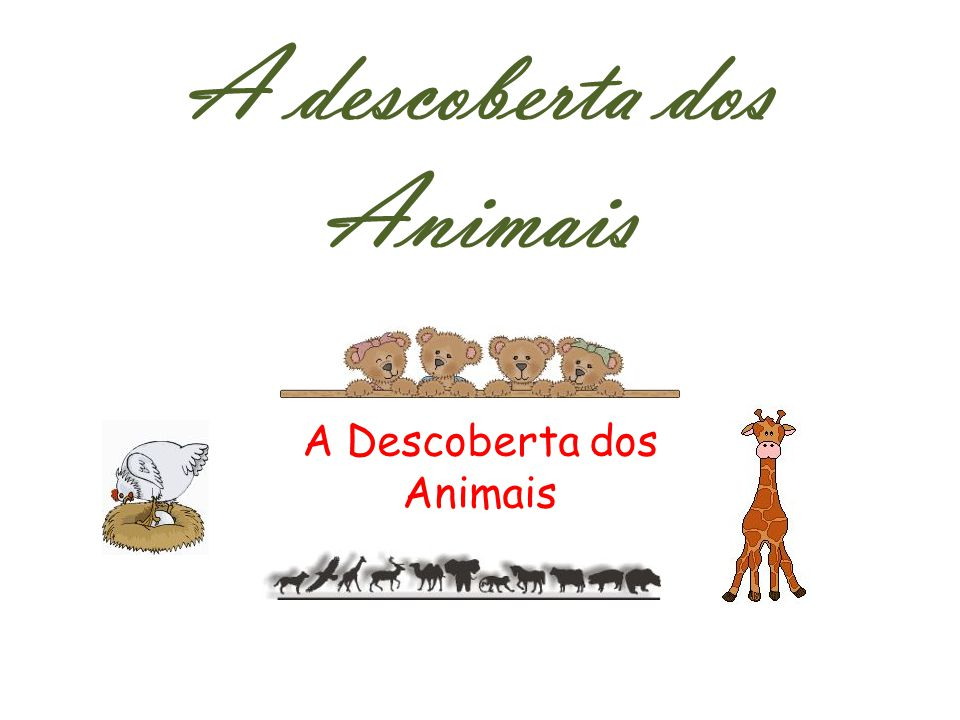 A descoberta dos Animais A Descoberta dos Animais