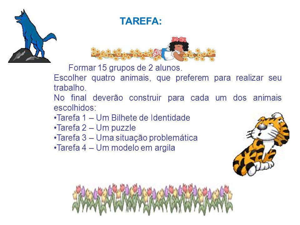 TAREFA: Formar 15 grupos de 2 alunos. Escolher quatro animais, que preferem para realizar seu trabalho. No final deverão construir para cada um dos an