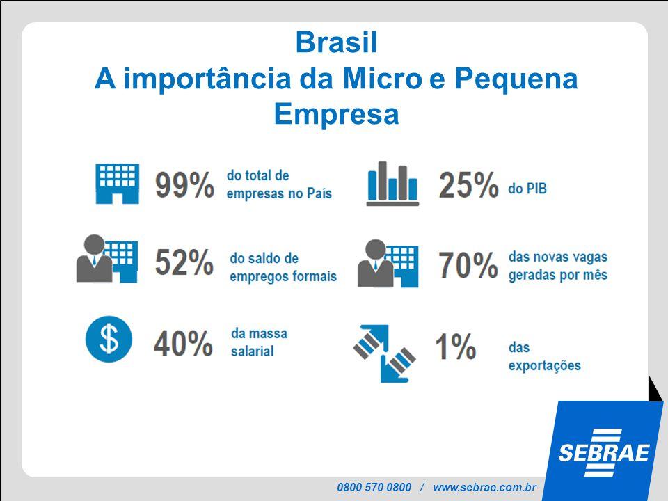 0800 570 0800 / www.sebrae.com.br Brasil Distribuição dos Municípios por Porte 46% dos municípios com menos de 10.000 habitantes.