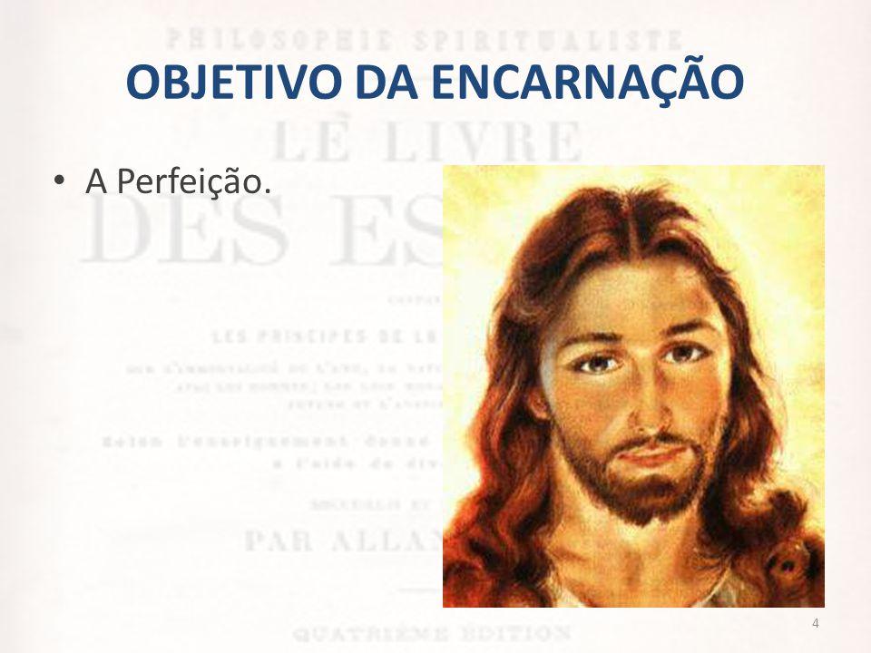 OBJETIVO DA ENCARNAÇÃO • Deus nos impõe a encarnação como ferramenta para chegarmos até a perfeição.