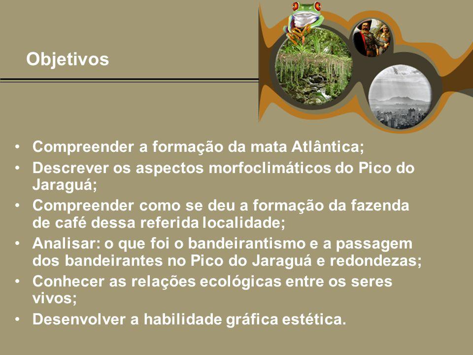 Objetivos •Compreender a formação da mata Atlântica; •Descrever os aspectos morfoclimáticos do Pico do Jaraguá; •Compreender como se deu a formação da