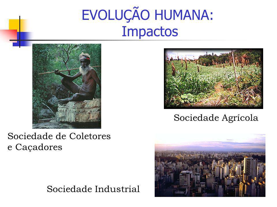 EVOLUÇÃO HUMANA: Impactos Sociedade de Coletores e Caçadores Sociedade Agrícola Sociedade Industrial