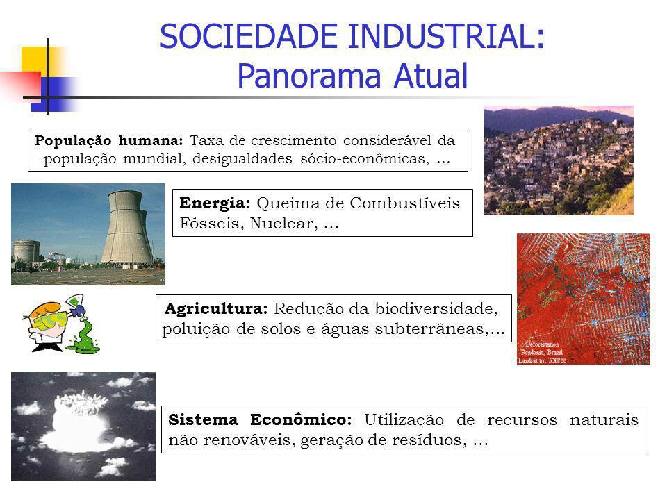 SOCIEDADE INDUSTRIAL: Panorama Atual Energia: Queima de Combustíveis Fósseis, Nuclear, … Sistema Econômico: Utilização de recursos naturais não renová