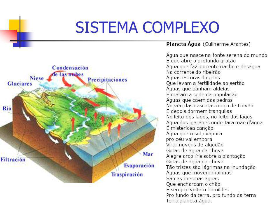 SISTEMA COMPLEXO Planeta Água (Guilherme Arantes) Água que nasce na fonte serena do mundo E que abre o profundo grotão Água que faz inocente riacho e