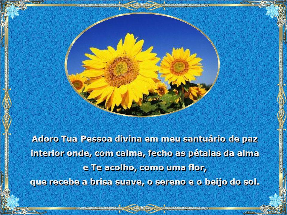 Adoro Tua Pessoa divina em meu santuário de paz interior onde, com calma, fecho as pétalas da alma e Te acolho, como uma flor, que recebe a brisa suave, o sereno e o beijo do sol.