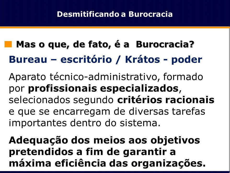 Desmitificando a Burocracia As vantagens da Burocracia:  Igualdade de todos diante da Lei  Metodologia Racional  Competência Técnica (Meritocracia)  Transparência