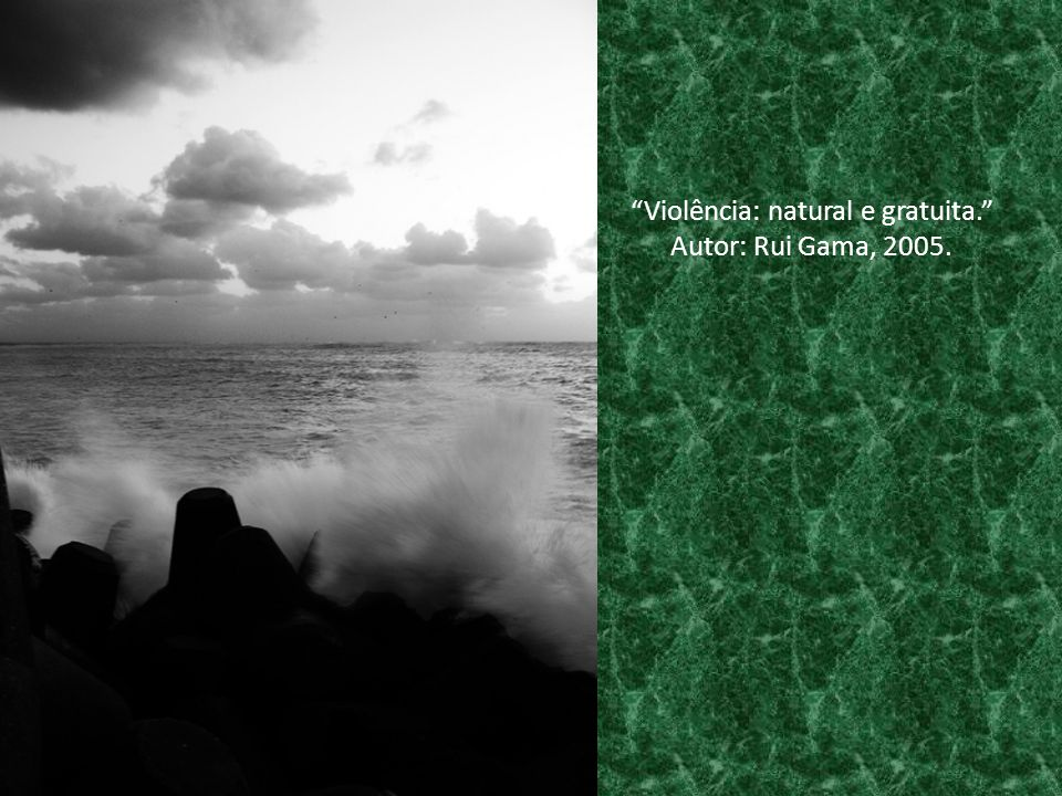 """Violência: natural e gratuita."" Autor: Rui Gama, 2005."