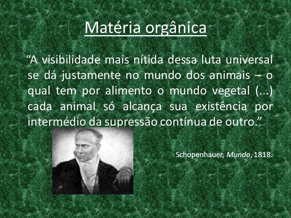 """Matéria orgânica """"A visibilidade mais nítida dessa luta universal se dá justamente no mundo dos animais – o qual tem por alimento o mundo vegetal (..."""