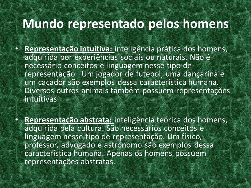 Mundo representado pelos homens • Representação intuitiva: inteligência prática dos homens, adquirida por experiências sociais ou naturais.