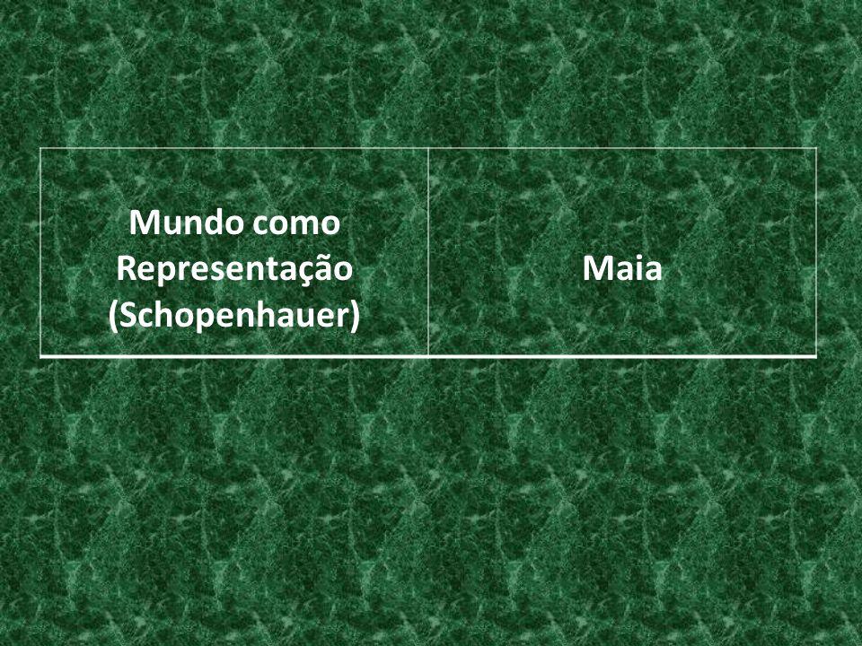 Mundo como Representação (Schopenhauer) Maia
