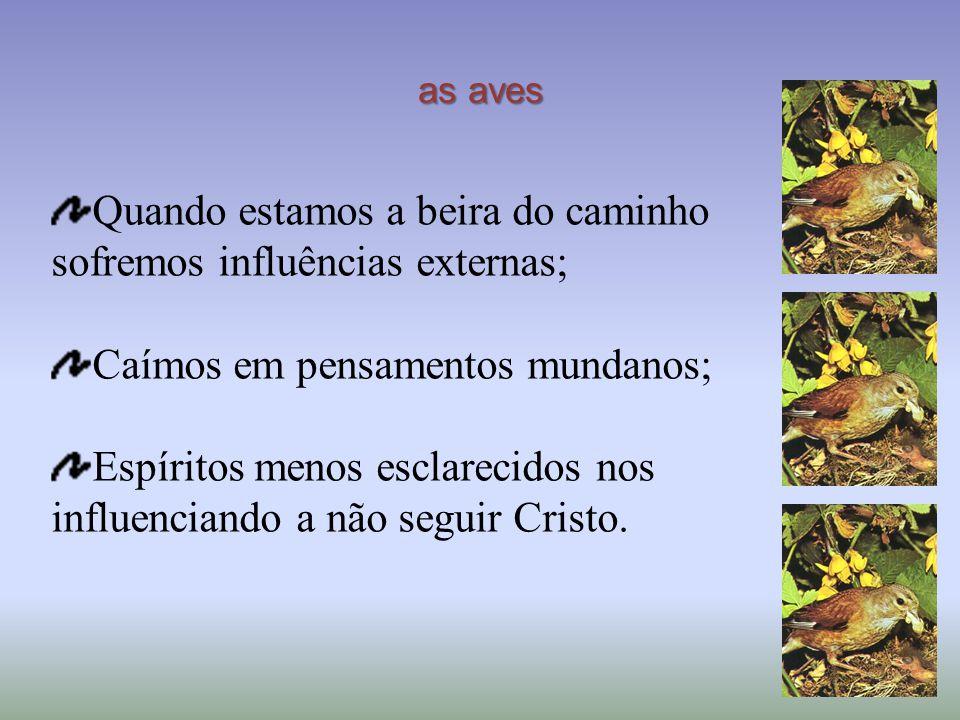 as aves Quando estamos a beira do caminho sofremos influências externas; Caímos em pensamentos mundanos; Espíritos menos esclarecidos nos influenciando a não seguir Cristo.