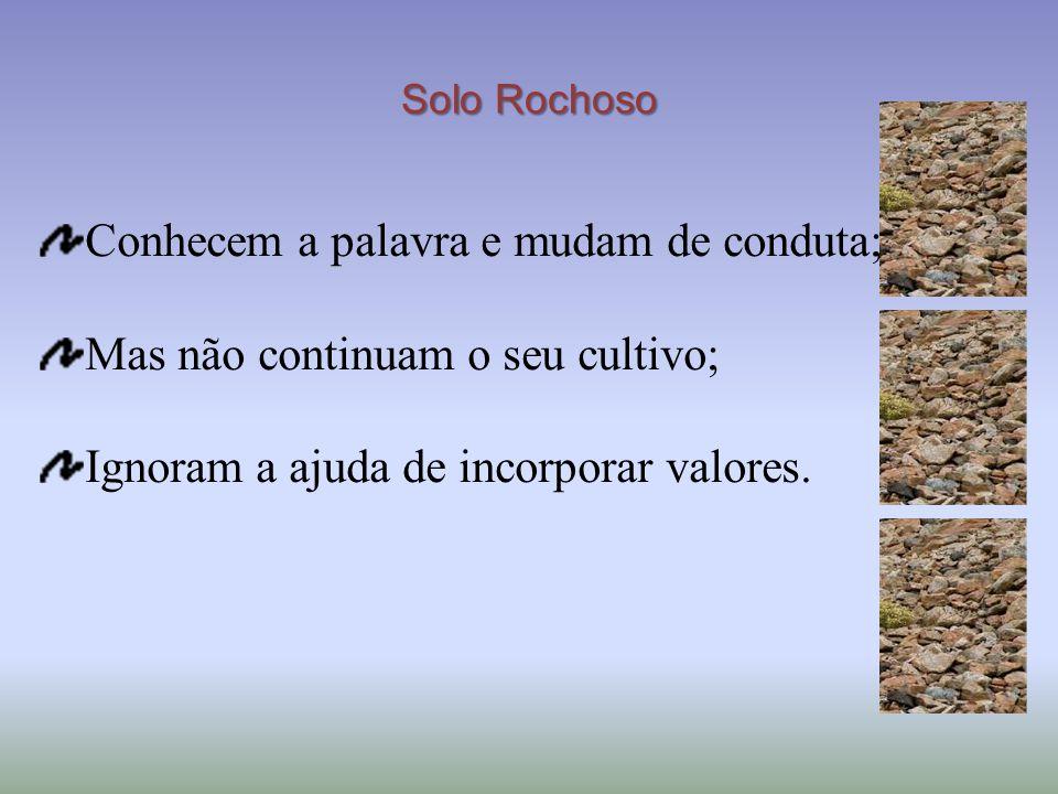 Solo Rochoso Conhecem a palavra e mudam de conduta; Mas não continuam o seu cultivo; Ignoram a ajuda de incorporar valores.