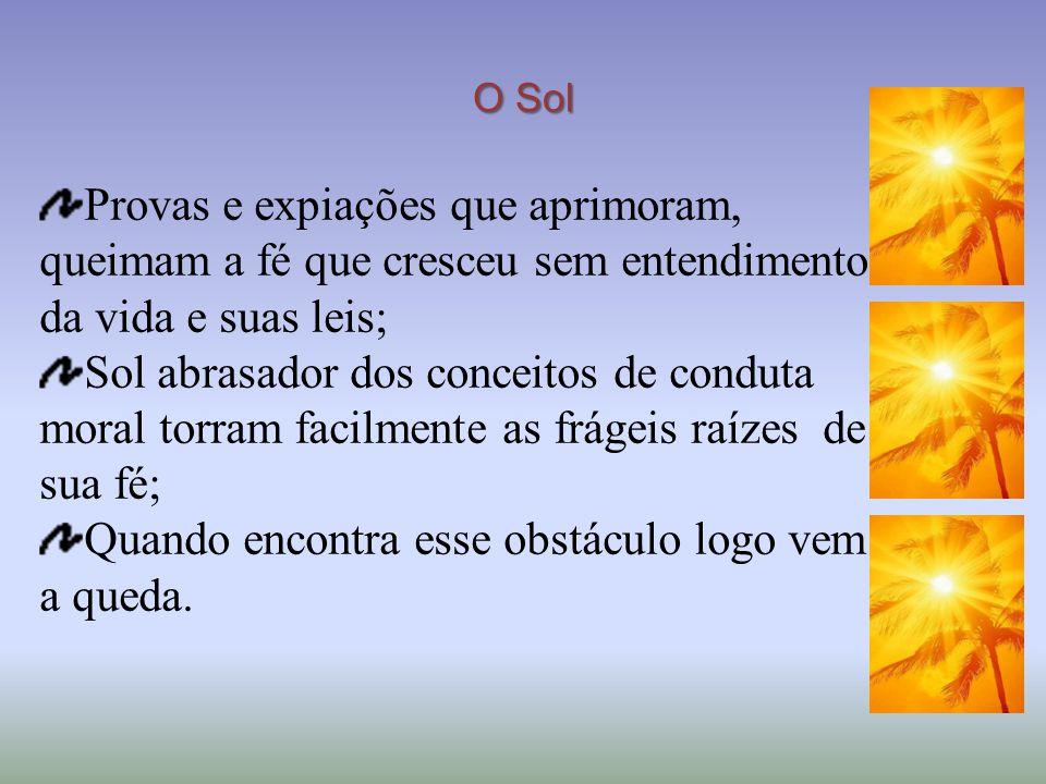 O Sol Provas e expiações que aprimoram, queimam a fé que cresceu sem entendimento da vida e suas leis; Sol abrasador dos conceitos de conduta moral to