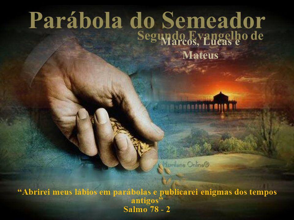 O semeador e sua semente semeador semente Cristo é o semeador que veio ao mundo para nos mostrar a semente da verdade, trazendo a sua moral através de seus atos.