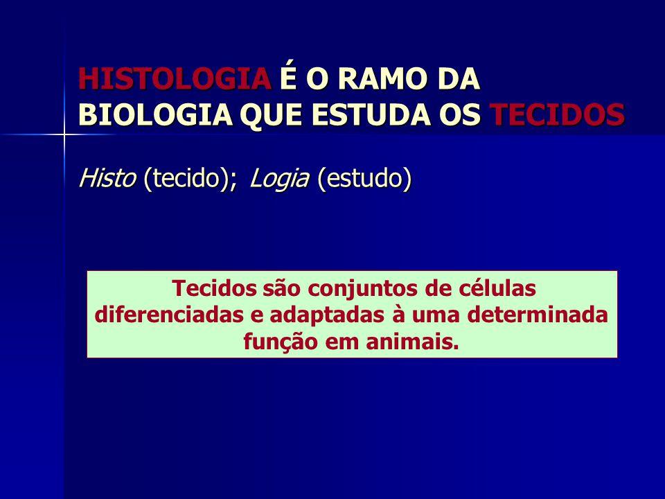 HISTOLOGIA É O RAMO DA BIOLOGIA QUE ESTUDA OS TECIDOS Histo (tecido); Logia (estudo) Tecidos são conjuntos de células diferenciadas e adaptadas à uma determinada função em animais.
