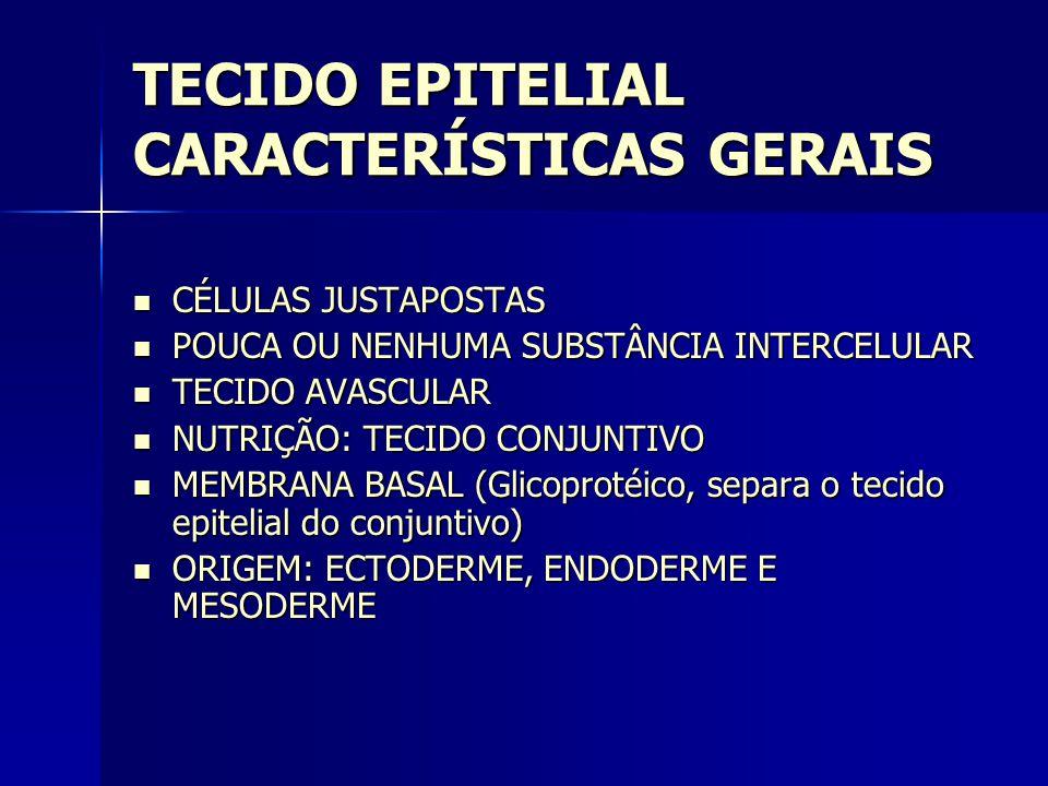 TECIDO EPITELIAL CARACTERÍSTICAS GERAIS  CÉLULAS JUSTAPOSTAS  POUCA OU NENHUMA SUBSTÂNCIA INTERCELULAR  TECIDO AVASCULAR  NUTRIÇÃO: TECIDO CONJUNTIVO  MEMBRANA BASAL (Glicoprotéico, separa o tecido epitelial do conjuntivo)  ORIGEM: ECTODERME, ENDODERME E MESODERME