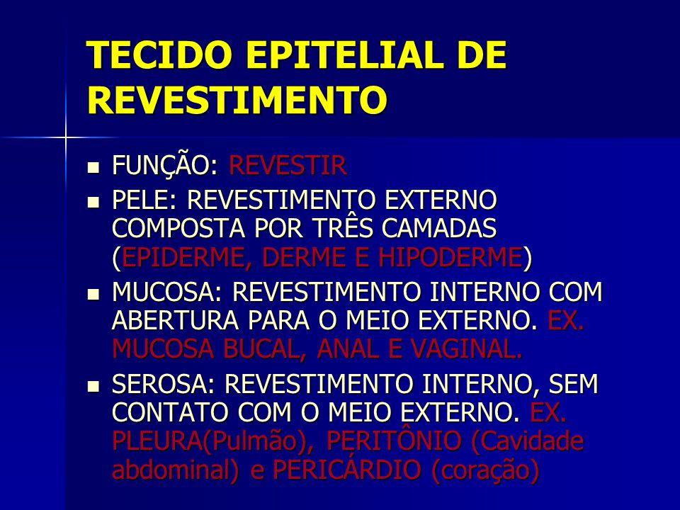 TECIDO EPITELIAL DE REVESTIMENTO  FUNÇÃO: REVESTIR  PELE: REVESTIMENTO EXTERNO COMPOSTA POR TRÊS CAMADAS (EPIDERME, DERME E HIPODERME)  MUCOSA: REV