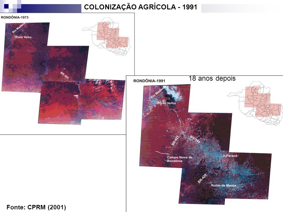 Fonte: CPRM (2001) COLONIZAÇÃO AGRÍCOLA - 1991 18 anos depois