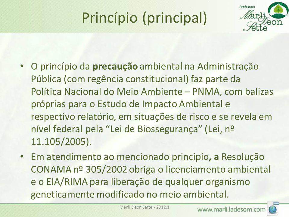 Marli Deon Sette - 2012.1 Princípio (principal) • O princípio da precaução ambiental na Administração Pública (com regência constitucional) faz parte