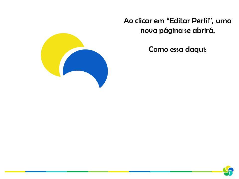 Ao clicar em Editar Perfil , uma nova página se abrirá. Como essa daqui:
