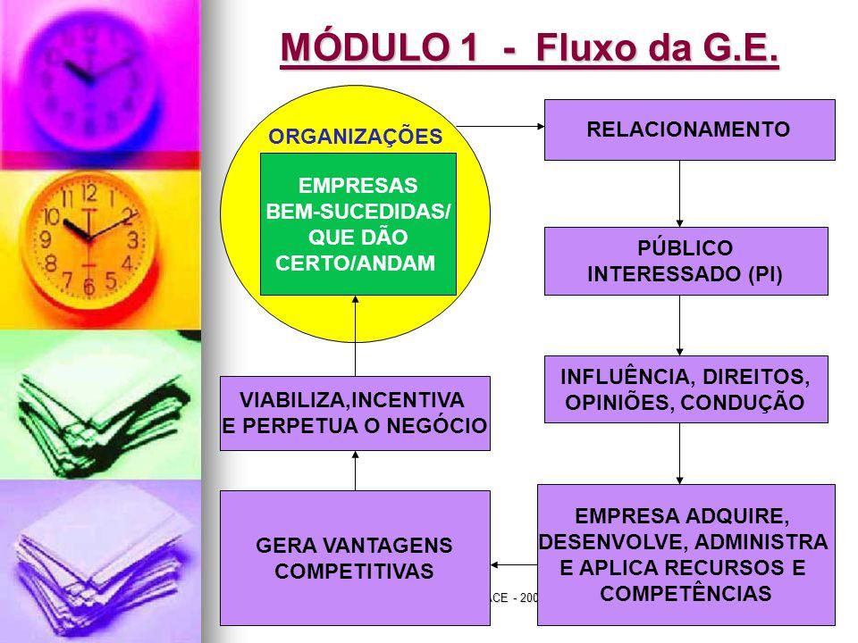 Jairo de Carvalho Guimarães - FACE - 2008 MÓDULO 1 - Fluxo da G.E. RELACIONAMENTO PÚBLICO INTERESSADO (PI) INFLUÊNCIA, DIREITOS, OPINIÕES, CONDUÇÃO VI