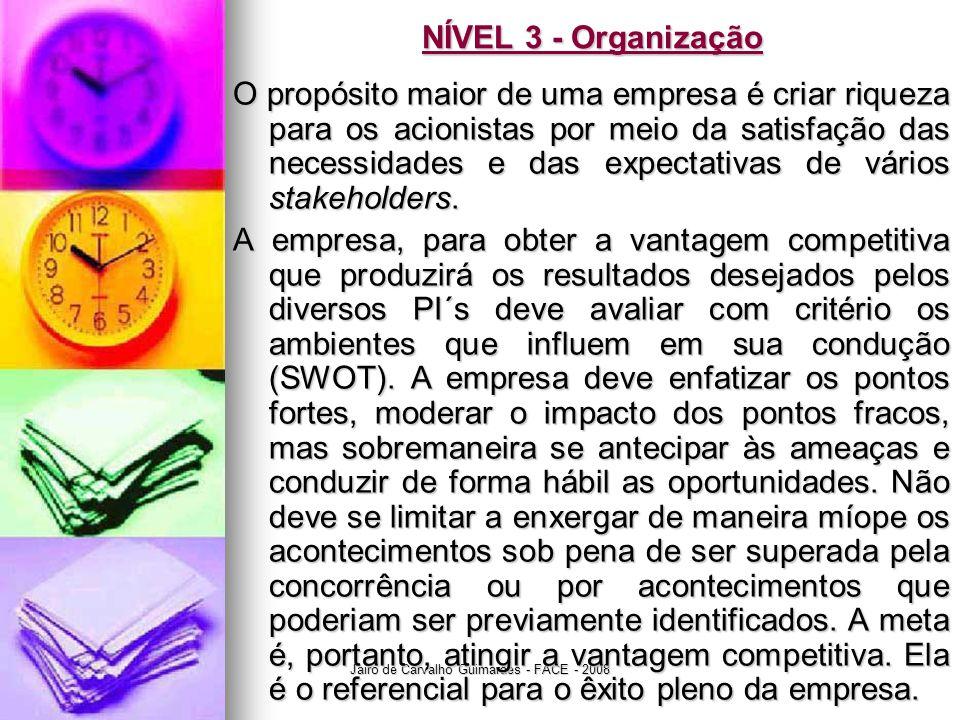 Jairo de Carvalho Guimarães - FACE - 2008 NÍVEL 3 - Organização O propósito maior de uma empresa é criar riqueza para os acionistas por meio da satisf