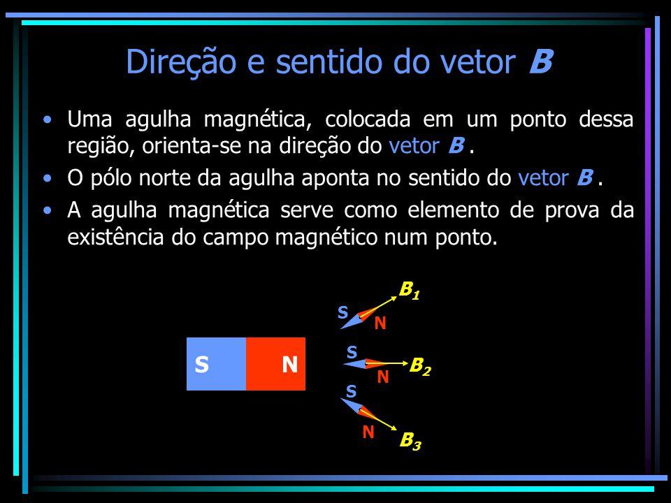 Direção e sentido do vetor B •Uma agulha magnética, colocada em um ponto dessa região, orienta-se na direção do vetor B. •O pólo norte da agulha apont