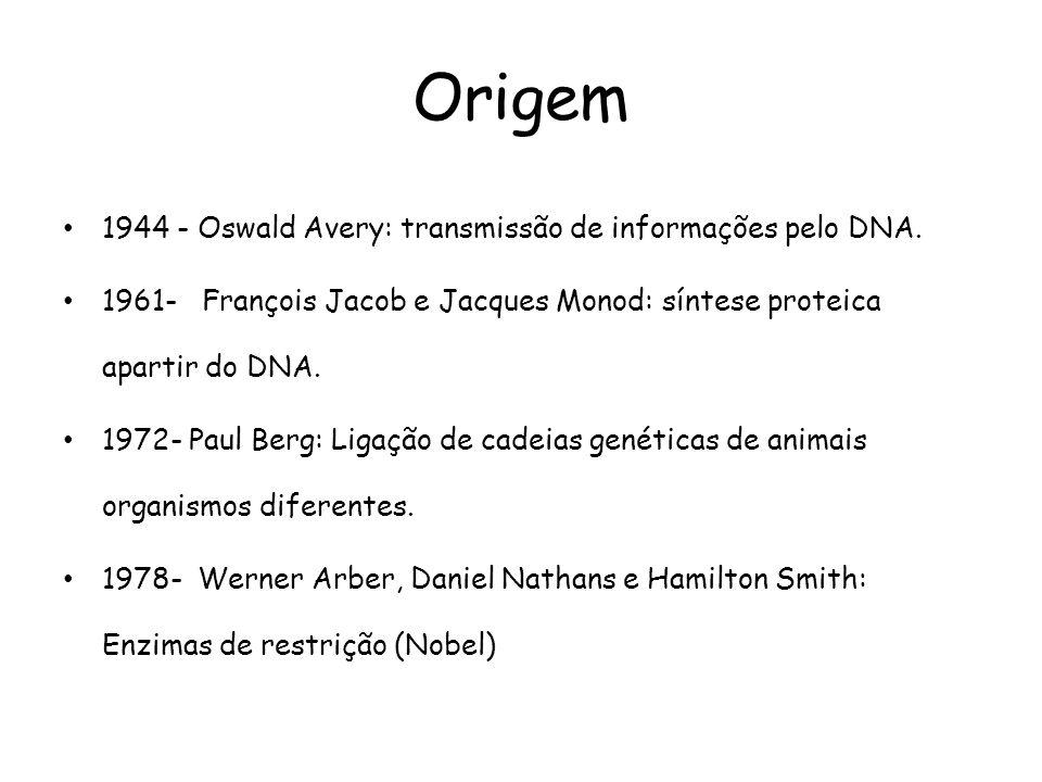 Origem • 1944 - Oswald Avery: transmissão de informações pelo DNA. • 1961- François Jacob e Jacques Monod: síntese proteica apartir do DNA. • 1972- Pa