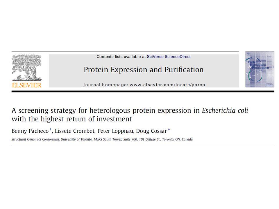 Objetivo: • Estabelecer uma abordagem eficiente frente a proteínas de difícil expressão utilizando E.coli.