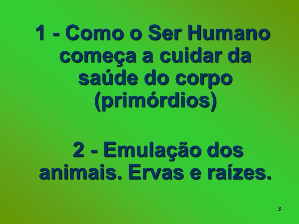 3 1 - Como o Ser Humano começa a cuidar da saúde do corpo (primórdios) 1 - Como o Ser Humano começa a cuidar da saúde do corpo (primórdios) 2 - Emulação dos animais.