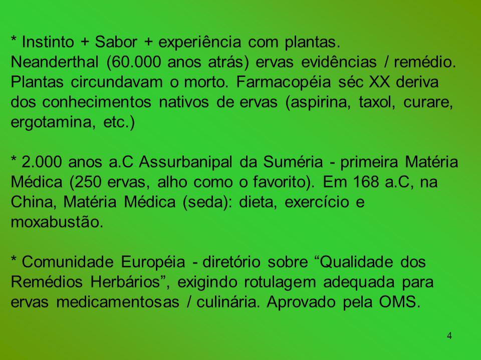 4 * Instinto + Sabor + experiência com plantas.