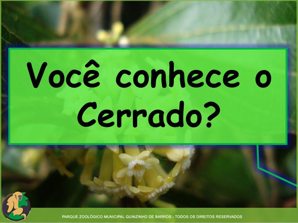 Você conhece o Cerrado?