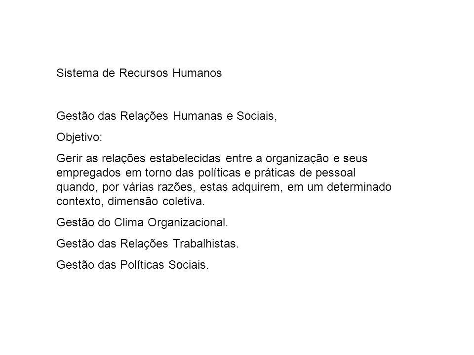 Sistema de Recursos Humanos Gestão das Relações Humanas e Sociais, Objetivo: Gerir as relações estabelecidas entre a organização e seus empregados em