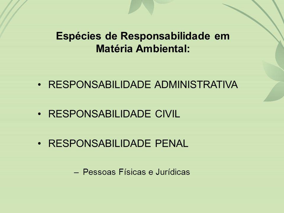 A preservação do meio ambiente é uma obrigação de todo cidadão e do Poder Público, independentemente de o ambiente a ser protegido estar localizado em área rural ou urbana.